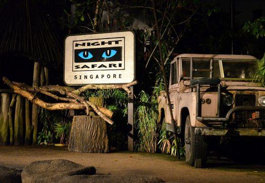 Vé Vườn thú đêm Night Safari