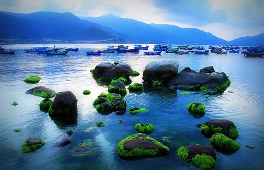 bai chuong Kinh nghiệm du lịch Bình Hưng