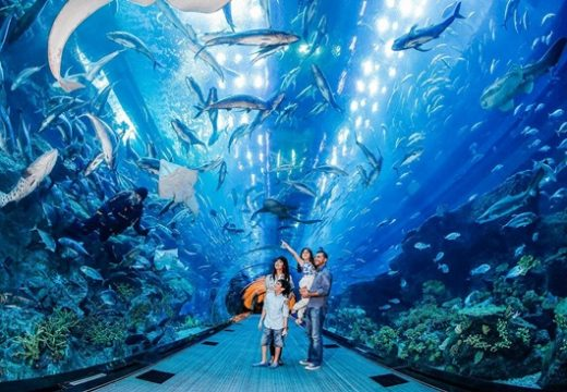 Những điểm đến tiết kiệm chi phí khi đi du lịch Singapore