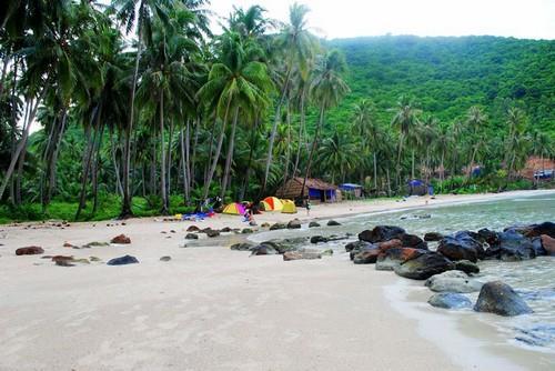 cam trai Du lịch đảo Nam Du