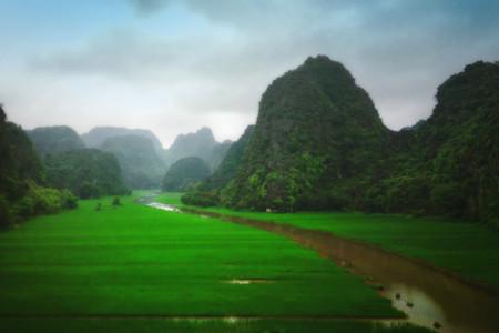 cánh đồng xanh du lịch ninh bình