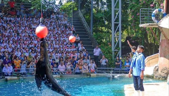 Công viên safari bangkok điểm tham quan hấp dẫn trong các chuyến du lịch Thái Lan