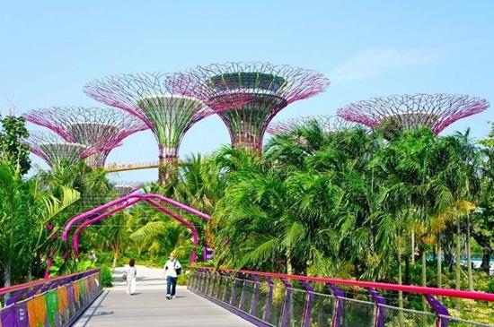 Công viên sinh thái Gardens by the Bay Singapore