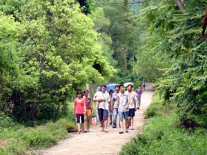 Đi Dạo Trong Vườn Quốc Gia Cát Bà