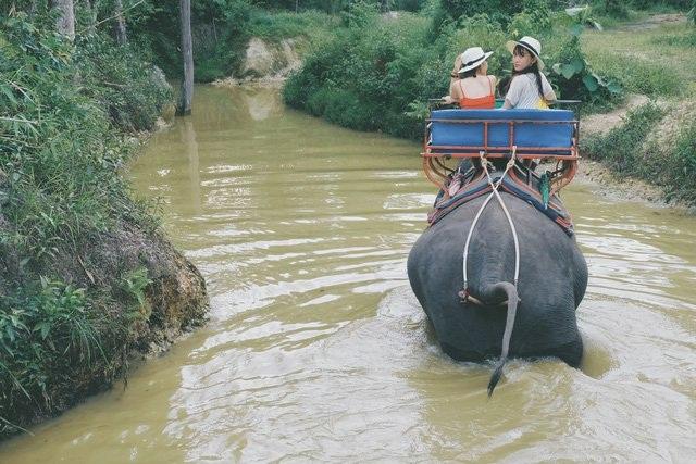 Du lịch Thái Lan đắm mình nơi hồ nước thần tiên ở Khlong Thom