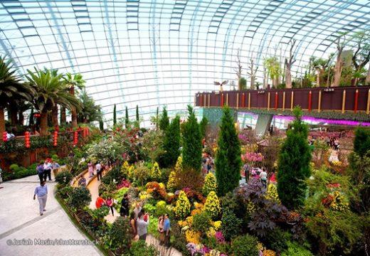 """Garden by the bay - """"Thành phố trong một khu vườn"""""""