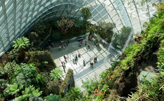 Khám phá khu Bay South khi tham quan Garden by the bay Singapore