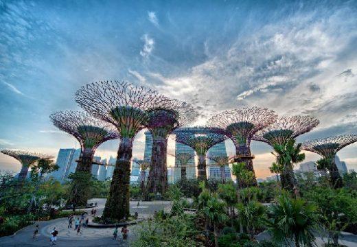 Kinh nghiệm đi Gardens by the Bay ở Singapore