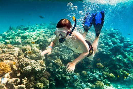 lăn san hô Khám phá Côn Đảo