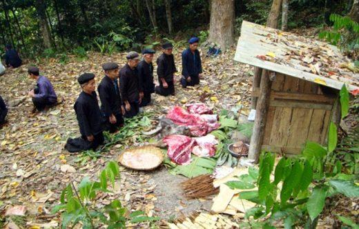 Lễ cúng thần rừng ở hoàng su phì