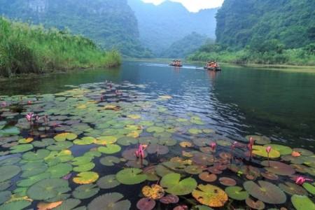 nan nước xanh du lịch ninh bình