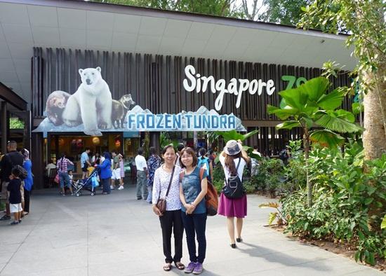 Vườn thú singapore zoo địa điểm vui chơi lý tưởng cho trẻ em