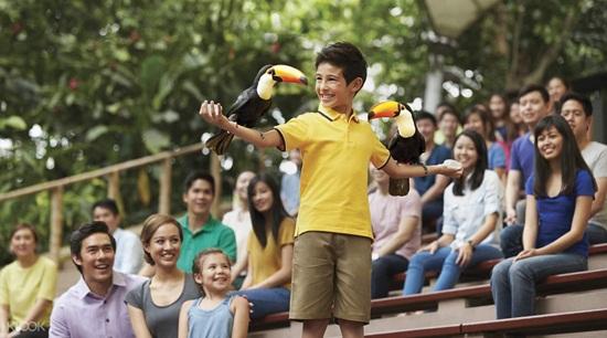 Top 4 điểm vui chơi cho bé trong dịp nghỉ hẻ ở Singapore