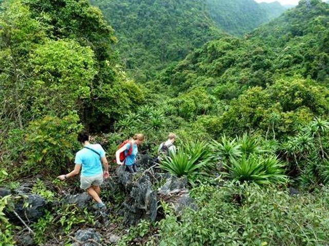 Trekking ở Vườn quốc gia Cát Bà